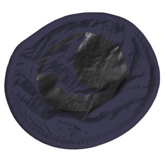 frisbee ticket to the moon bleu